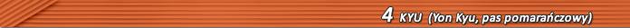 30_k04_pomaranczowy