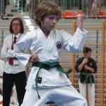 Mistrzostwa Polski Shorin Ryu Karate Warszawa 2014